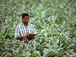 JAMB Subject Combination For Agricultural Science And Education
