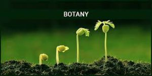 JAMB Subject Combination For Botany